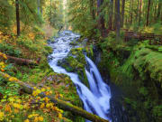 Seattle_Evergreen Escapes_Sol Duc Falls Olympic