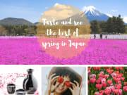 Spring in Japan JTB Collage