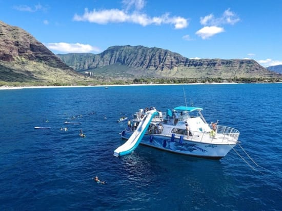 Swim with Wild Dolphins Cruise - Snorkel, Kayak, SUP, 20-Foot Water  SlideSALE Instant Confirmation