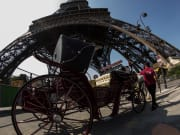 Eiffel Tower, Horse, Carriage Ride