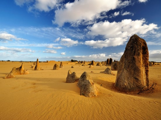Pinnacles Desert 4WD Tour with Sandboarding and Wildlife Park Visit from  Perth