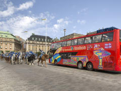 red city sightseeing bus passing knights on horses