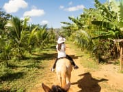 Cuba_Vinales_Valley_shutterstock_789314500