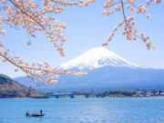 Fuji_Kawaguchiko_Sakura_shutterstock_626938010