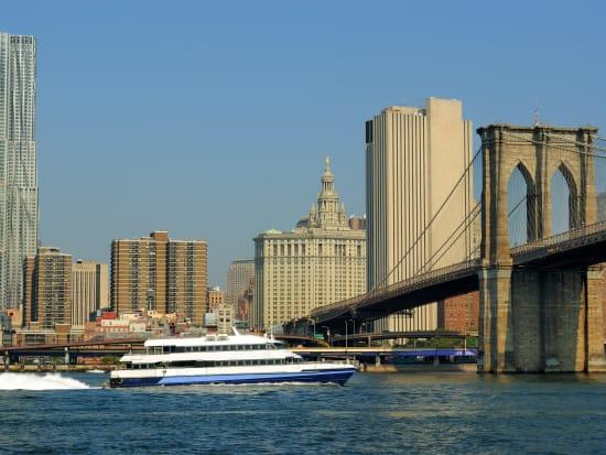 USA_NY_Statue of Liberty Cruise_Brooklyn Bridge