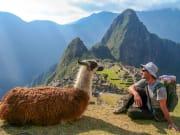 Peru_Machu Picchu_llama_shutterstock_466511777
