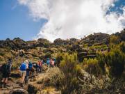 Tanzania_Kilimanjaro_shutterstock_552342997