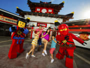 USA_California_Starline Tours_LEGOLAND CALIFORNIA NINJAGO THE RIDE