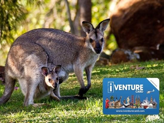 iVenture Flexi Pass Zoo and Wildlife