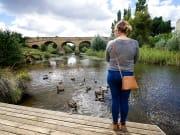 Meet the local ducks of Coal River