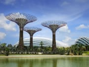 Gardens by the Bay_001