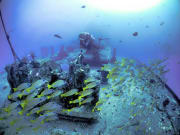 Scuba Diving 17