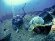 Scuba Diving 18