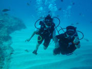 Scuba Diving 07