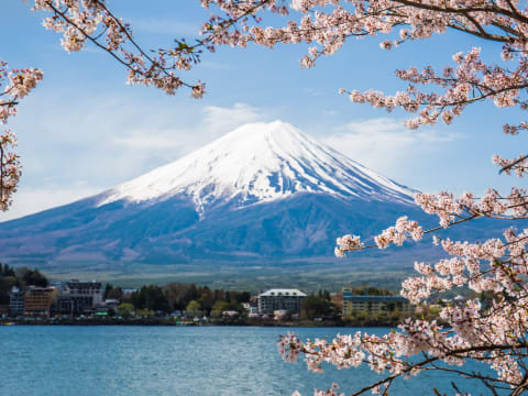 9e17e2c85 Mt. Fuji Tours