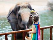 Singapore_zoo_shutterstock_1190341807