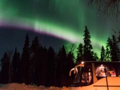 Northern Lights Hunting by Bus