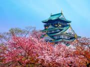 Japan_Osaka_Castle_Cherry_Blossoms_shutterstock_434007868