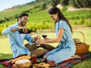 Generic_Vineyard_Winery_Wine_Tasting_Picnic_Couple