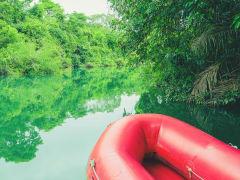 Brazil_Bonito_Formoso river_shutterstock_768476563