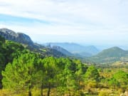 Natural Park of Sierra de Grazalema
