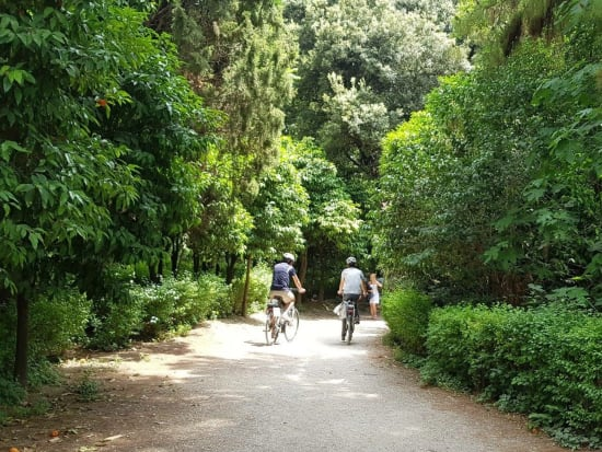 Cycling through the trails of national garden