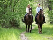 Horse_Ride_Couples_shutterstock_580356865