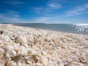 Australia_Perth_Shark Bay_Shell Beach_shutterstock_140879062