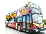 USA_Chicago_Big Bus Tours_Hop On Hop Off City Tour