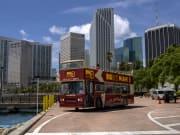 USA_Miami_Big Bus Tours_Double Decker Bus