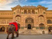India_Jaipur_Amber fort_shutterstock_781351405