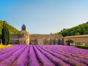 France_Provence_Lavender_Fields