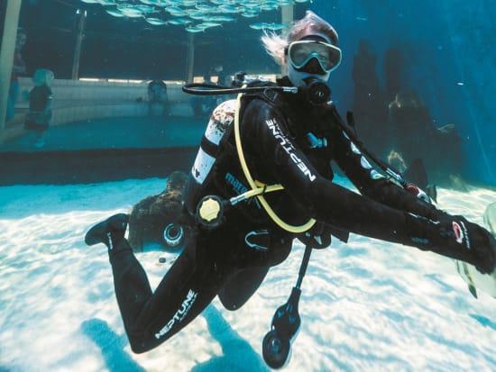 diver inside aqwa aquarium of western australia