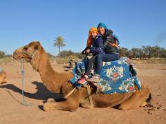 agadir, desert, camel ride
