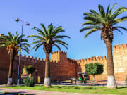 ramparts, taroudant, palm trees, morocco