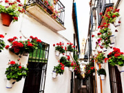 Spain_Cordoba-Calleja de las Flores_123rf_27683618