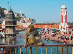 India_Haridwar_shutterstock_1083727904