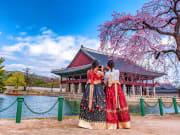 hanbok_cherry blossoms_shutterstock_1312476395