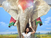 ART IN PARADISE - BANGKOK iventure pass thailand