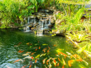 phuket botanical gardens