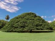 Hawaii_Oahu_Moanalua Gardens_shutterstock_389661181