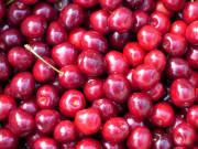 cherry-167371_1920
