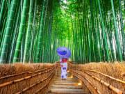 Japan_Kyoto_Arashiyama_Bamboo_Forest_Yukata_shutterstock_1174876909