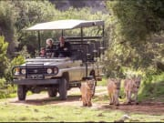 Safari_Hotspots2c Tours
