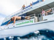PWF_Snorkel_Cruise