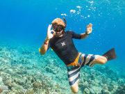 OQ_Dolphin_Snorkel (7)