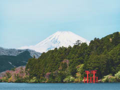 Lake Ashi_Mt. Fuji