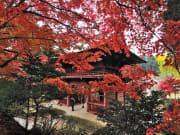 神谷寺 提供:千葉県君津市