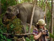 Thailand_Phuket_Elephant Sanctuary Encounter