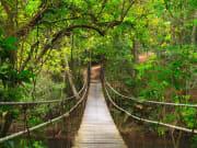 Khao Yai National Park Suspension Bridge